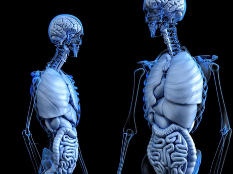 Your gut is connected to your brain, and here's an example why