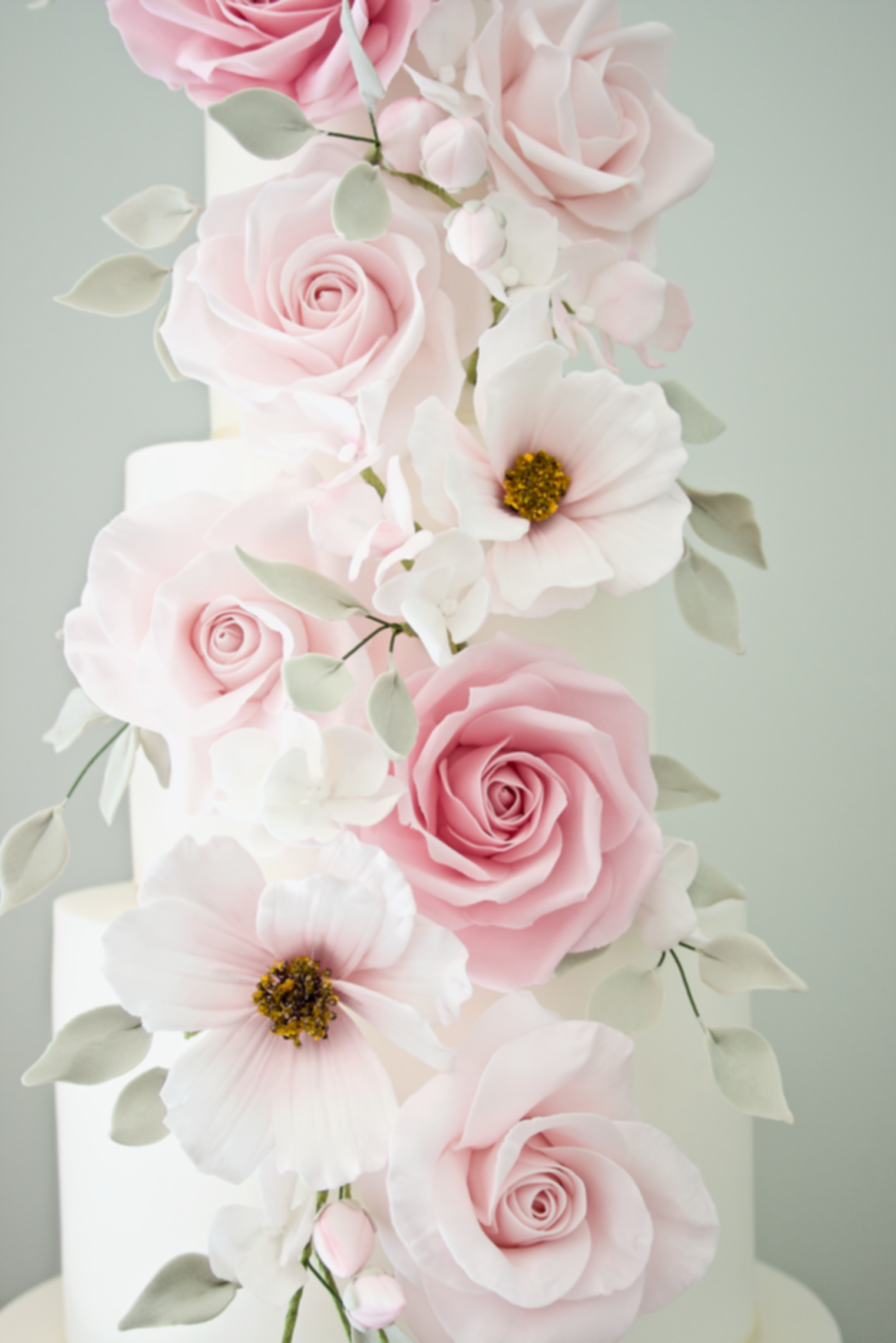 Sugar flowers, wedding cakes northamptonshire
