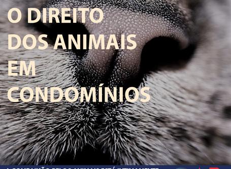 O DIREITO DOS ANIMAIS EM CONDOMÍNIOS