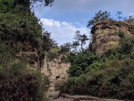 Hell's Gate National Park Inspired the 2019 Lion King Movie