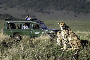 SAFARI VEHICLE_edited.jpg