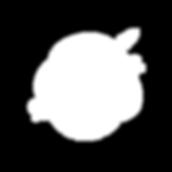 logo_Agility_white.png