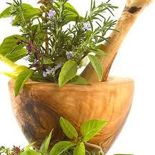 herbs for beauty skin