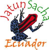 jatun Sacha frog.jpg