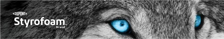 Wolf Eyes wLOGO.JPG
