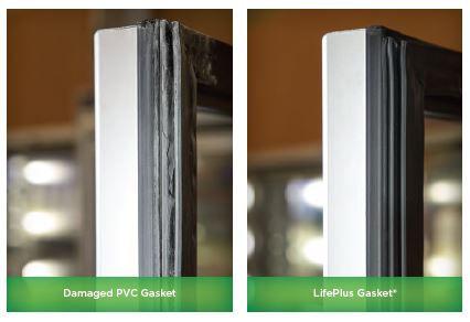 LifePlus Gasket.JPG
