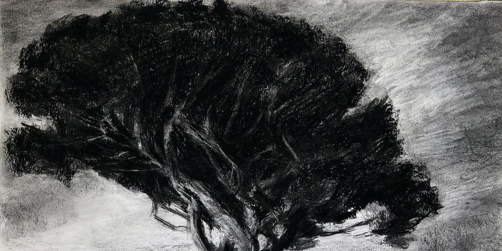 Anne-Lie Larsson Ljungs stämningsfulla måleri i kol och grafik från Capri