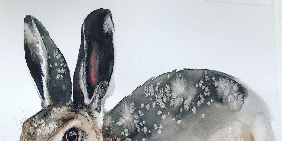 Ingela Matsson ställer ut akvarell med motiv från djurriket