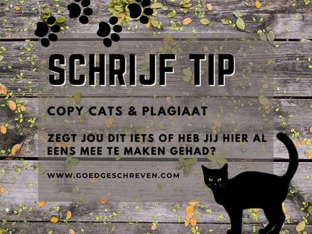 Copy Cats & Plagiaat