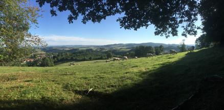 Uitzicht richting Châtel-Montagne