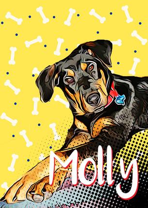 Molly the Rottie