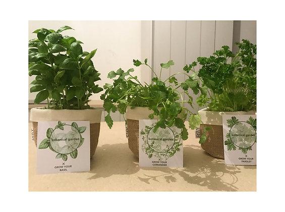Ourganique - botanical garden - jute bag