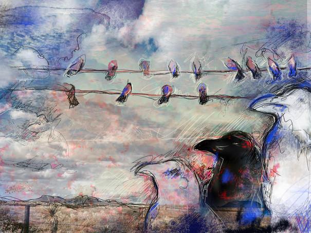 Marfa Birds