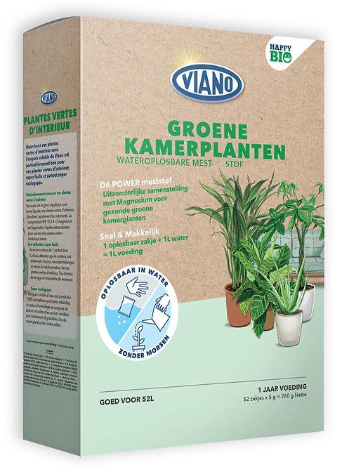 Happy BIO Groene Kamerplanten