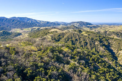 Enjoy your privacy in nature on this 79+ acre parcel with stunning eastern valley and ridge views of Carmel Valley and Big Sur. Just over 3 miles to the private Tom Fazio Design, Top-100 Preserve Golf Club and Ranch Club, this 1.97-acre homeland approved for a 1+ level home and guest house is ready for you to build your dream home in the Carmel sun. Your security in nature is protected while amenities are at your fingertips: The Preserve Golf and Ranch Clubs and daily resident services. Security, water, roads, electricity, cell coverage, fast fiber optic internet, and fire management infrastructure are all in place.