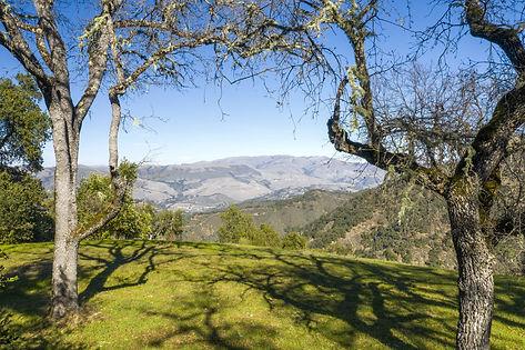Views of Carmel Valley & Big Sur