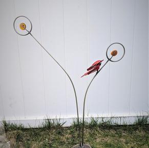 lone red bird.jpg