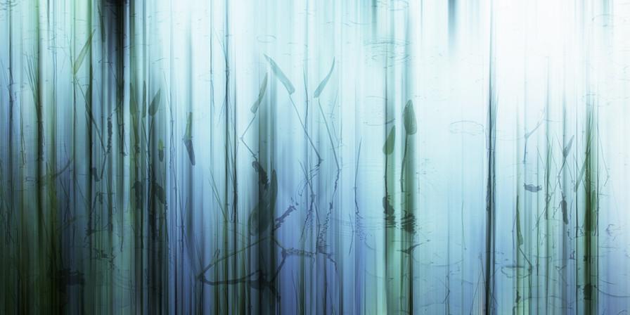 Water Spirits IV