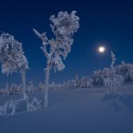 Winter Evening-Norway