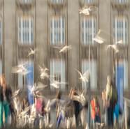 hamburg-moewen-vor-kunstforum.jpg