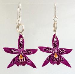 Star Orchid: Hand Drawn Acrylic