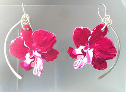Pink Orchid: Hand Drawn Polymer