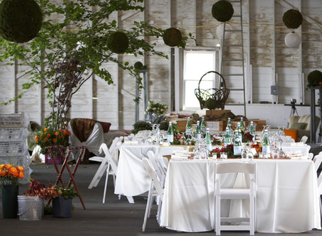 5 Top Notch Tips to Planing a Swanky Dinner Party in 2017