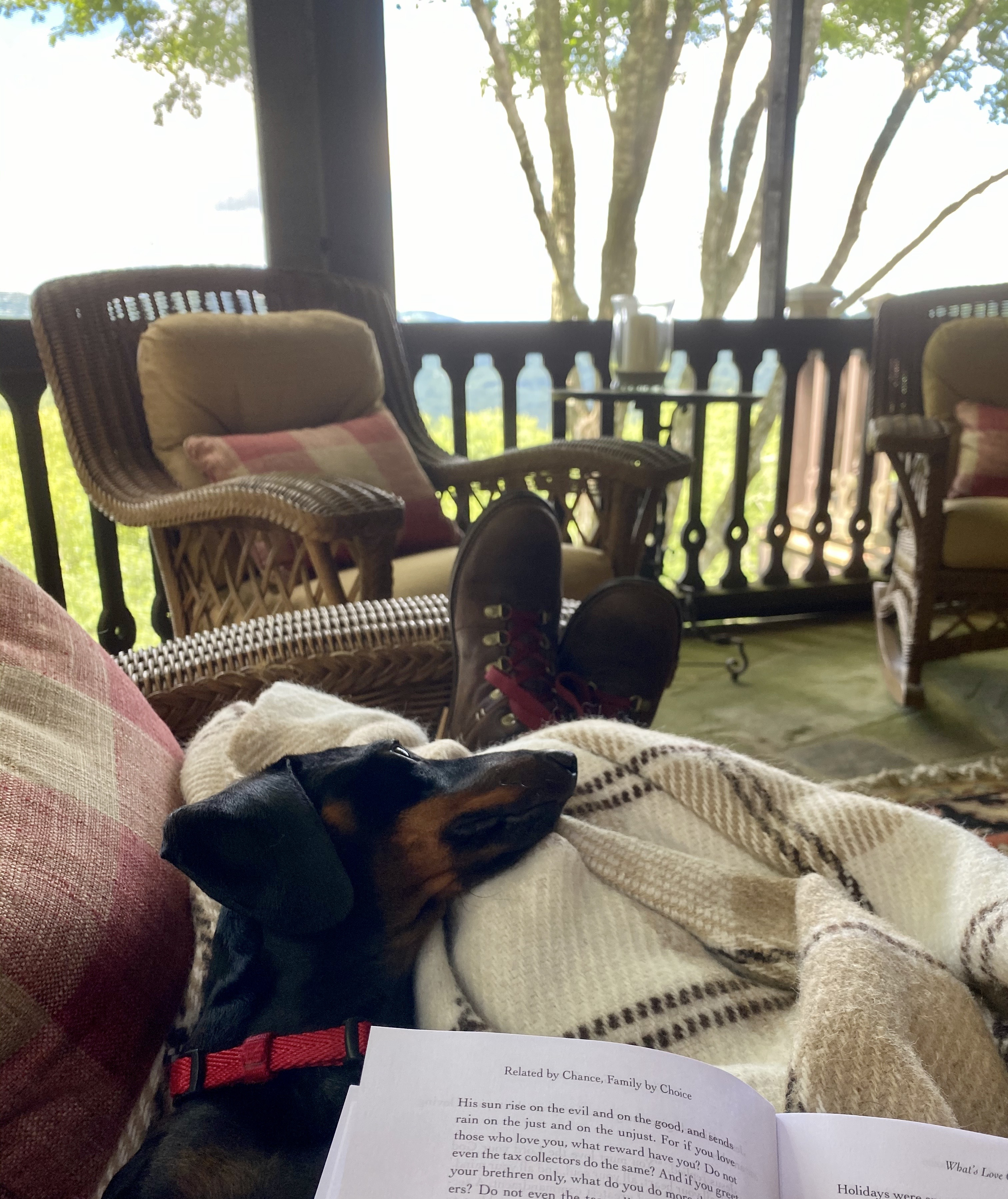 Spending a lazy day on the porch reading and researching for our upcoming interview.