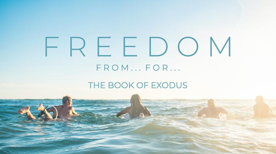 Exodus web.jpg