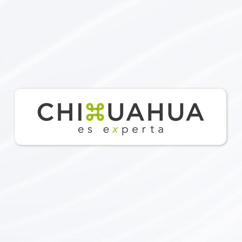 CHIHUAHUA ES EXPERTA