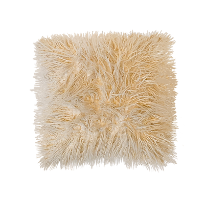Cream Faux Fur Pillow