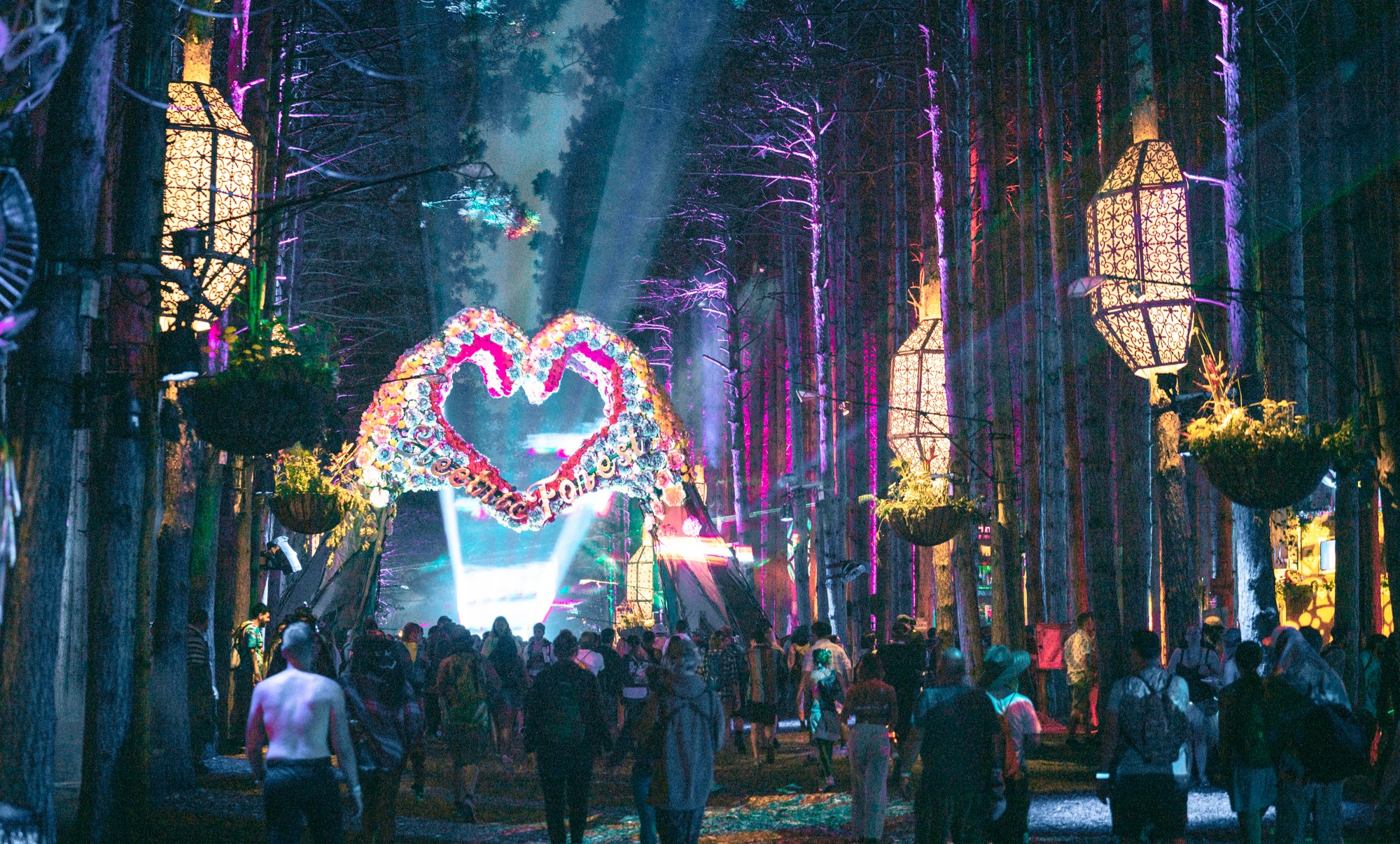 Electric_Forest_(43228932051)_edited