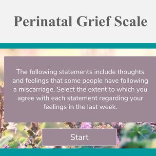Perinatal Grief Scale