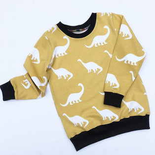 Long Sleeves! ._._All tops can be long o