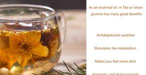 Benefits of Jasmine Essential Oil