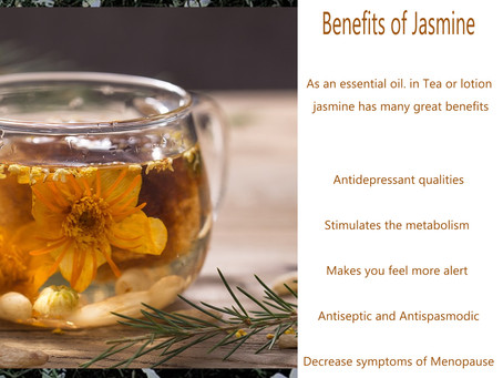 Benefits of Jasmine Essential Oil