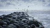 north-sea-2364125_960_720.jpg