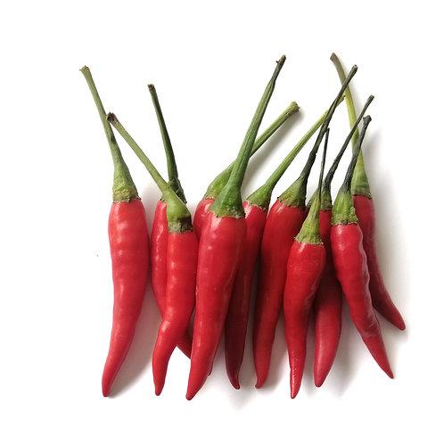 Red Chili Padi (100G) - Wet Market