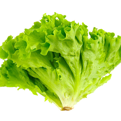 Local Lettuce 220g