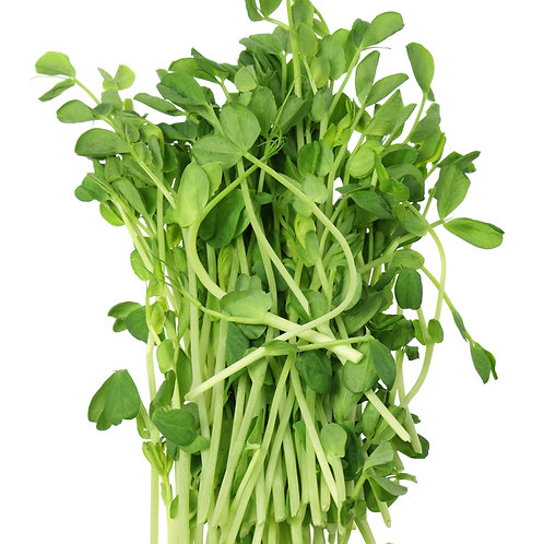 Pea Sprouts 150g