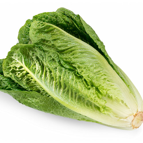 Organic Lettuce 200g