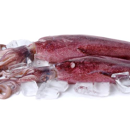 Whole Squid Large (Wild Caught), 250G