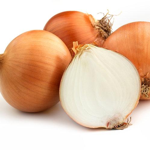 Organic Brown Onion 1 per pack