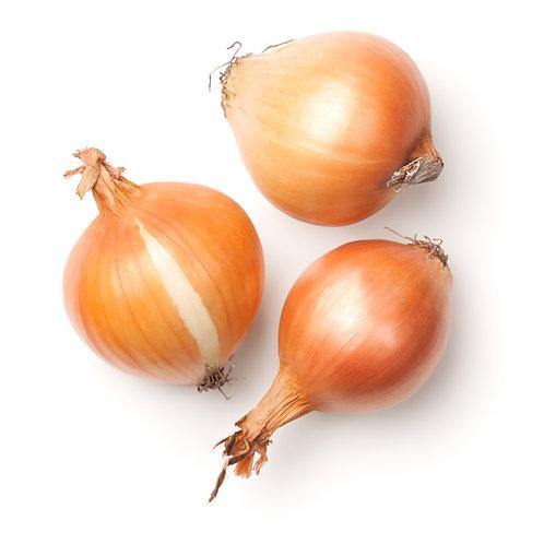 Kfresh Korea Yellow Onion 1kg