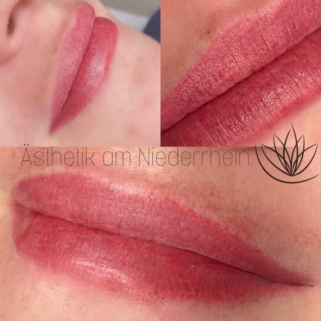 Aquarell Lips Emmerich am Rhein