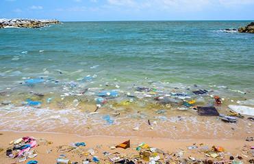 Policing Plastics Campaign