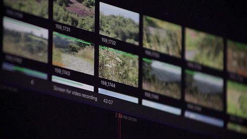 Talking Point Film Splash v2 5.jpg