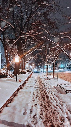 Snow in DC (Washington,DC-US)
