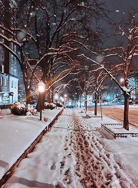 Snow in DC (Washington,DC-US)