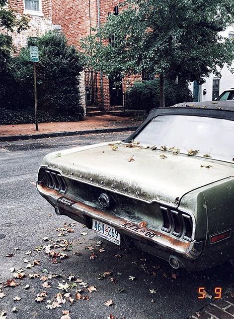 Vintage Mustang (Georgetown-US)